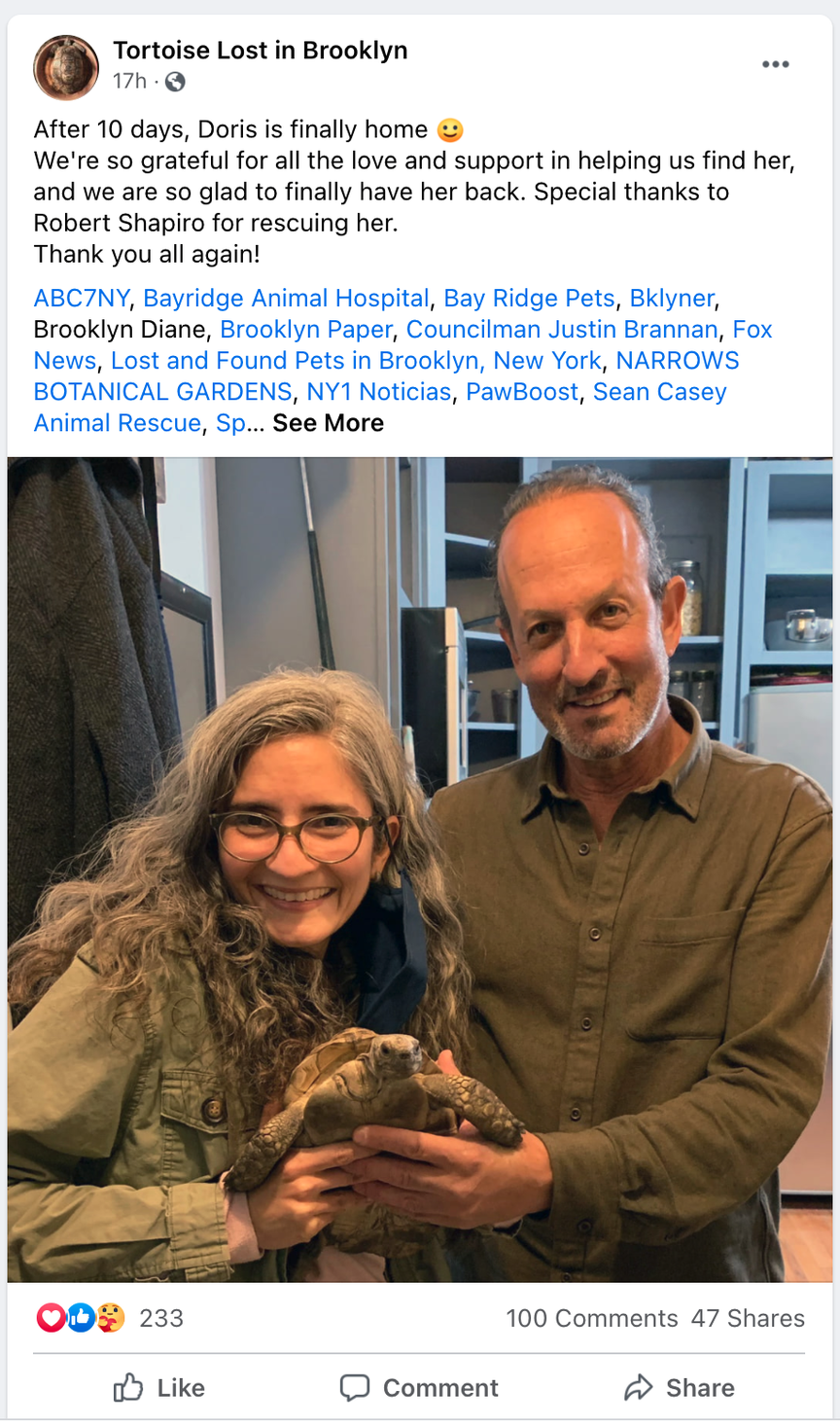 A Facebook post featuring a photo of a couple holding their pet turtle.